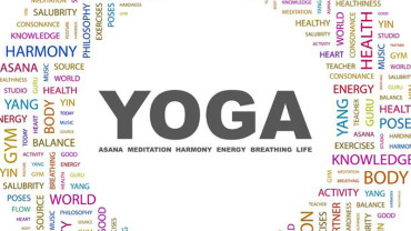 Amazing Yoga Facts – Online Videos Here!