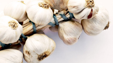 A Look Into Your Yoga Yummies: Part 6: Groovy Garlic