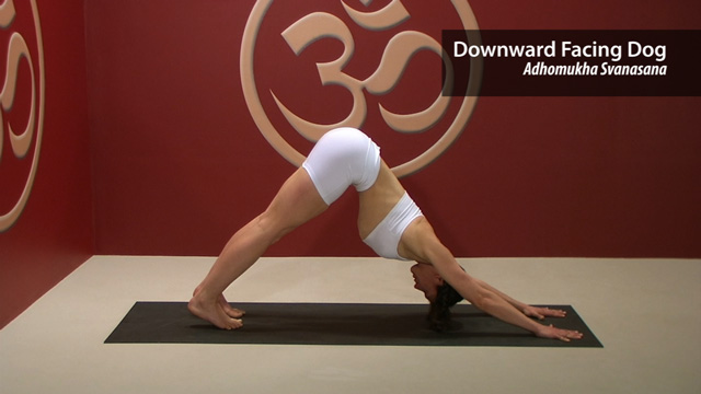 Downward Facing Dog – Adhomukha Svanasana