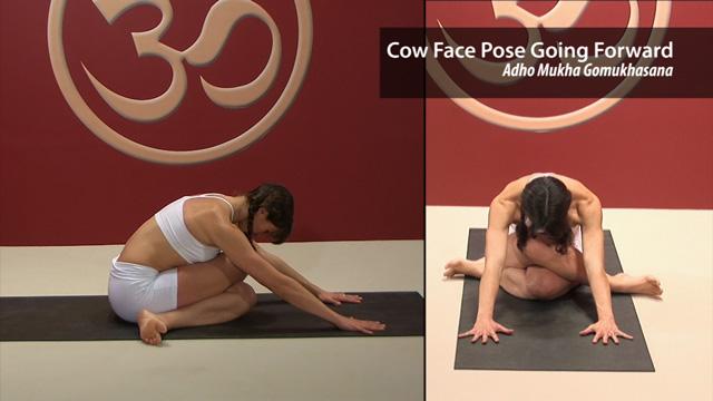 Cow Face Pose Going Forward – Adho Mukha Gomukhasana
