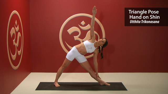 Triangle Pose with Hand on Shin – Utthita Trikonasana