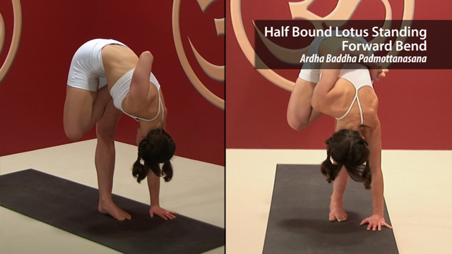 Half Bound Lotus Standing Forward Bend