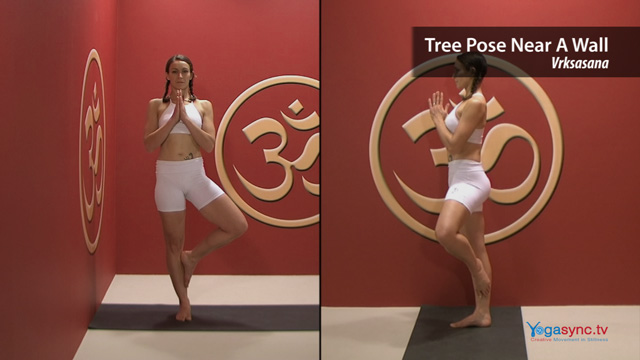 Tree Pose Near a Wall – Vrksasana