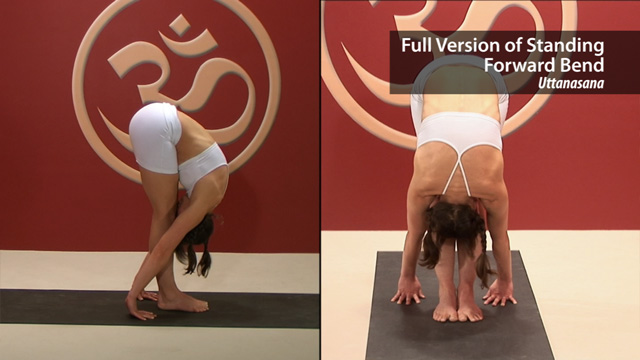 Standing Forward Bend Full Variation – Uttanasana