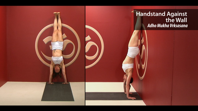 Handstand Against the Wall – Adho Mukha Vrkasana