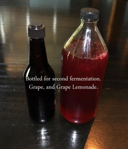 Grape-Lemonade-Water-Kefir--on-second-fermentop