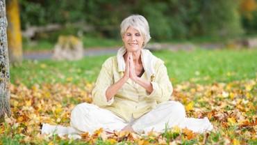 Teacher explains why 'hard' yoga is preparation for meditation